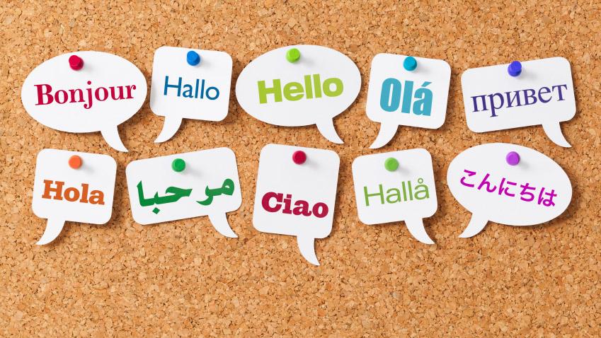 USANA Translation Team - Different Languages